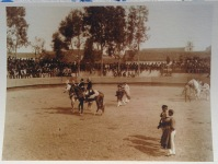 relvas_bullfightingphoto