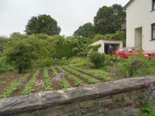 garden_amgaesschen