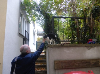 cats_puki&george_sigmundsgasse