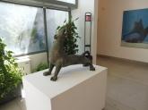A 1950s cat in the Museo Revoltella, Trieste