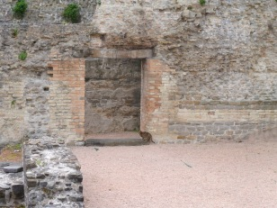 In the Roman ruins of Trieste's amphitheater.