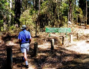 rainforestwalk_sign_nrnarooma
