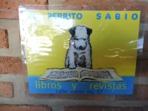 bookshopsign_ajijic