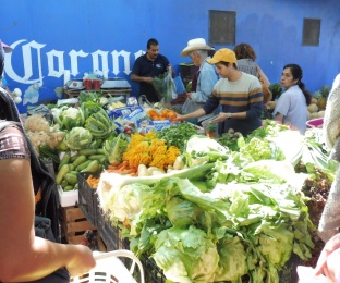 mercado_squashblossoms_ajijic_mar15