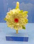 waxworks_flower_museoartespopulares_guad