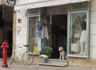 dog&shop&bike_pecs_may11