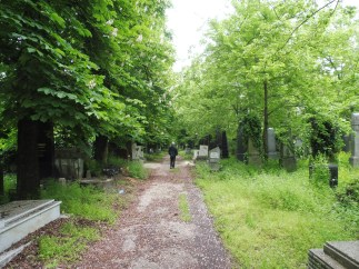 jewishcemetery_path&gb_budapest_may9
