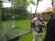 Fr. Bogner and Dan Graham's Pavilion
