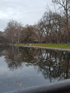The One Mile Pool in the splendid Bidwell Park, Chico.