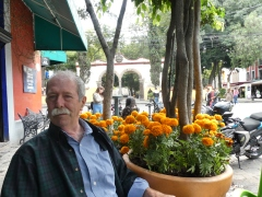 George at Moheli, a lovely Coyoacan restaurant. The marigolds were everywhere, as it was close to Dia de los Muertos time.