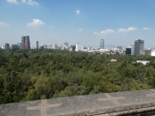 From Chapultepec Castle, looking over the extraordinary Park